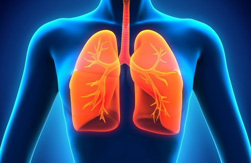 4-easy-natural-ways-to-heal-your-lungs